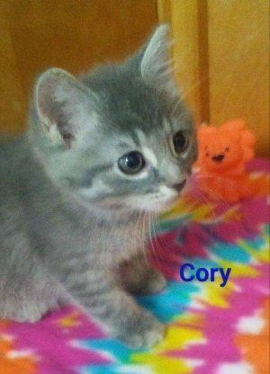 . Cory .